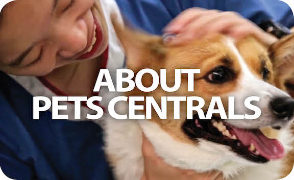 Learn more about Pets Central